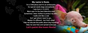 everything-rosie-banner-2013-blk